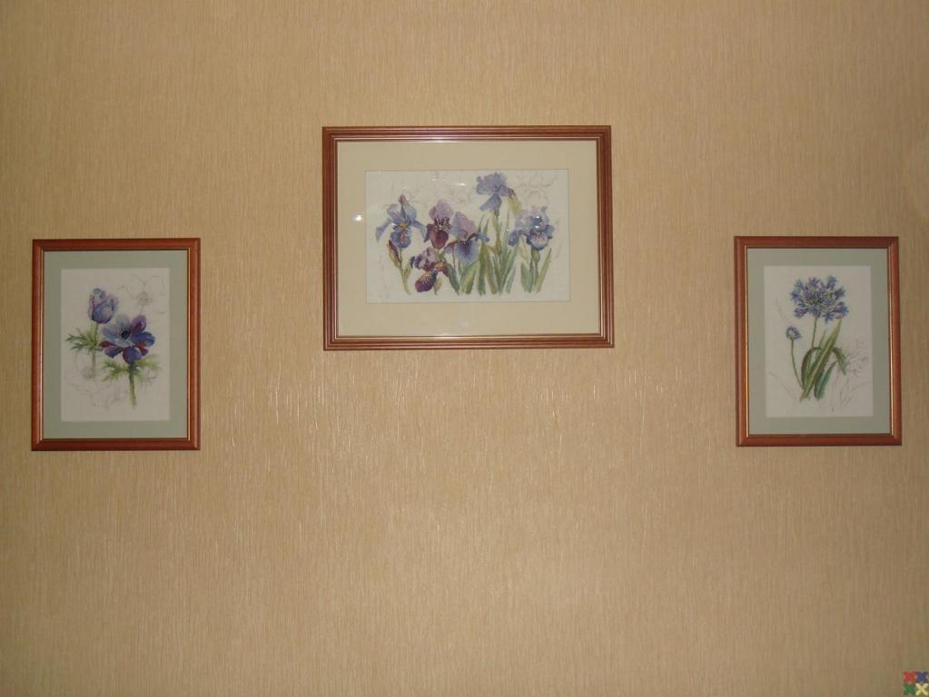 gallery_285_22_110997.jpg