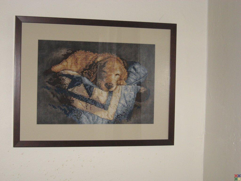 gallery_1648_119_19173.jpg