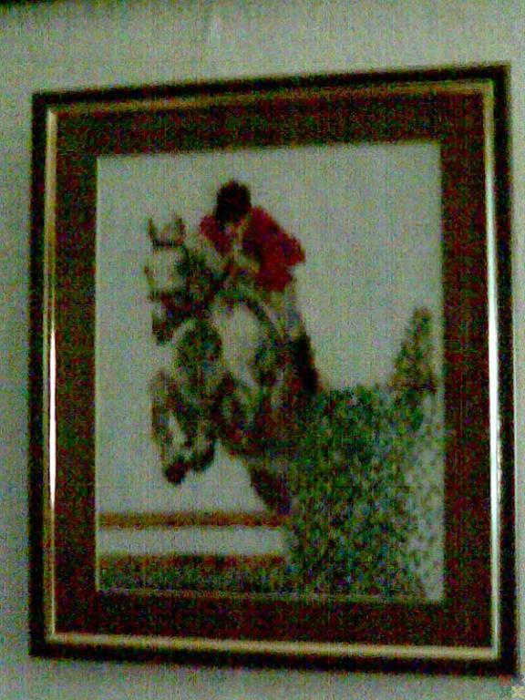 gallery_4086_295_13337.jpg