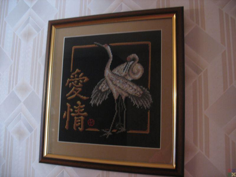 gallery_5647_399_50113.jpg