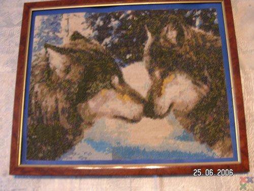 gallery_2078_441_957.jpg