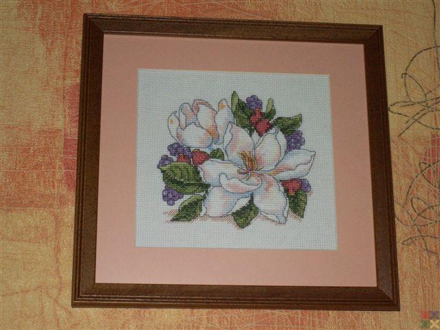 gallery_2694_469_43642.jpg