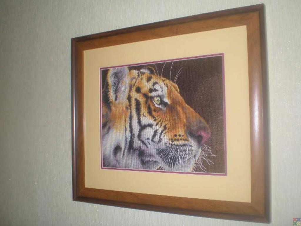 gallery_472_147_60981.jpg