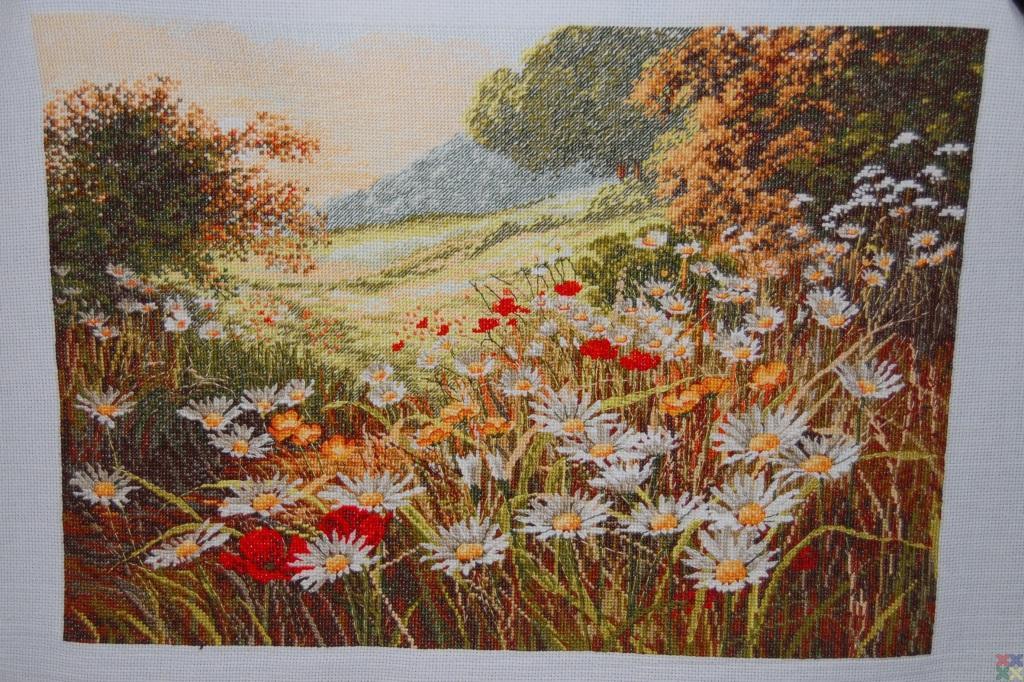 gallery_698_833_330744.jpg