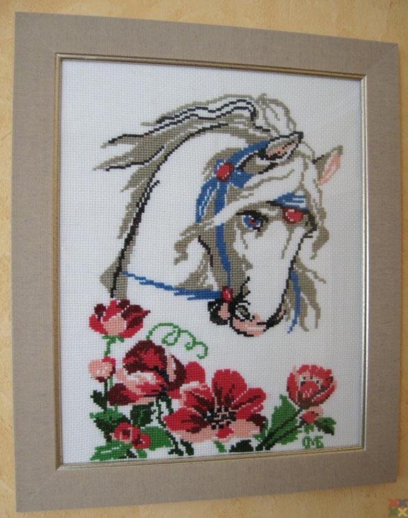 gallery_6156_841_126232.jpg