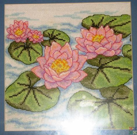 gallery_5152_869_18752.jpg