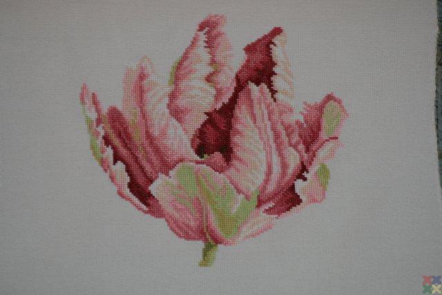 gallery_9269_865_6278.jpg