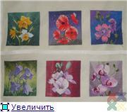 gallery_387_1126_1148.jpg