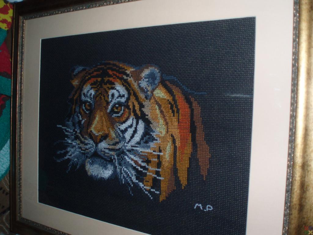 gallery_10414_1075_537614.jpg