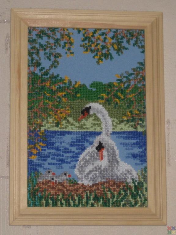 gallery_10913_1151_210581.jpg