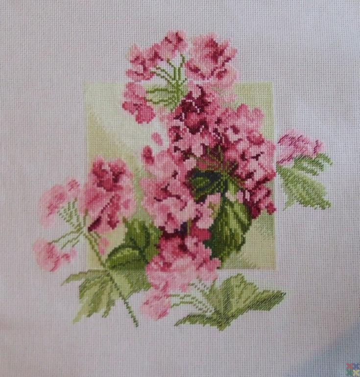 gallery_1450_871_337026.jpg