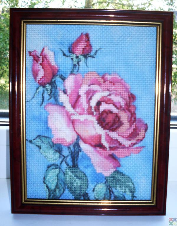 gallery_4262_1024_223184.jpg