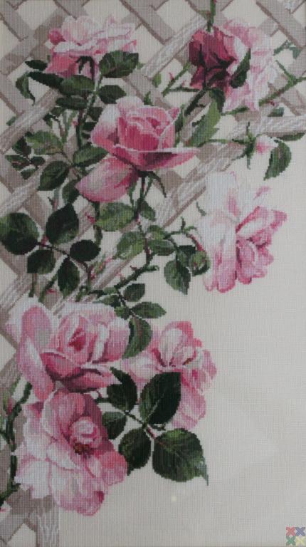 gallery_10891_1252_243647.jpg