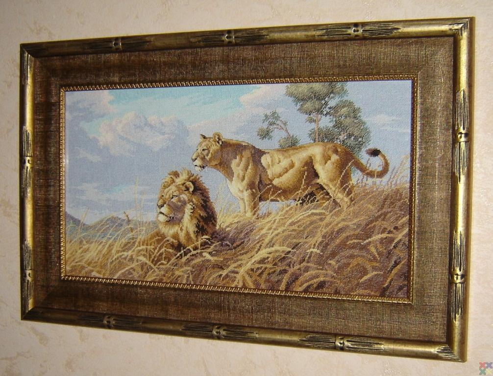 gallery_18987_1302_421926.jpg