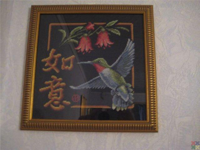 gallery_18987_1331_22391.jpg