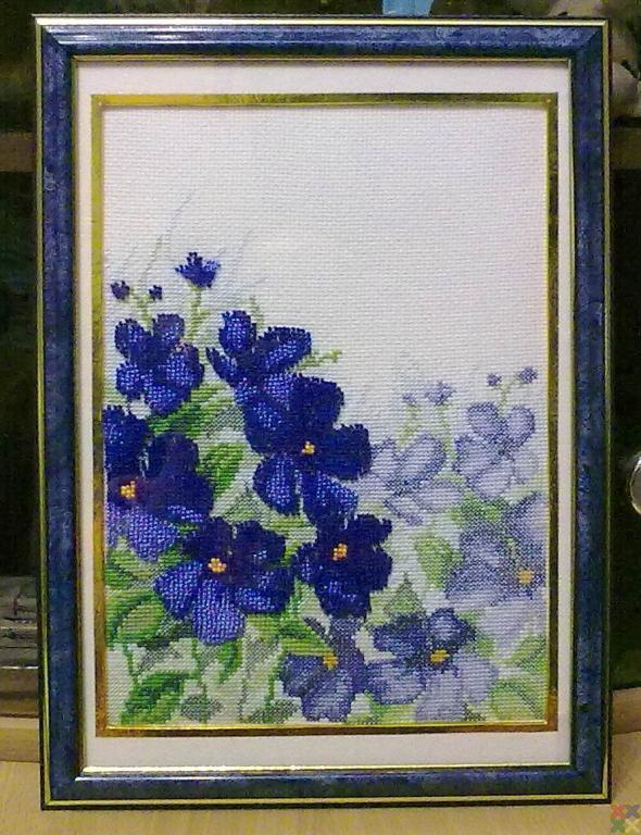 gallery_18987_1341_158098.jpg