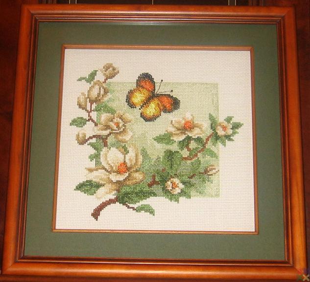 gallery_18987_1341_67064.jpg