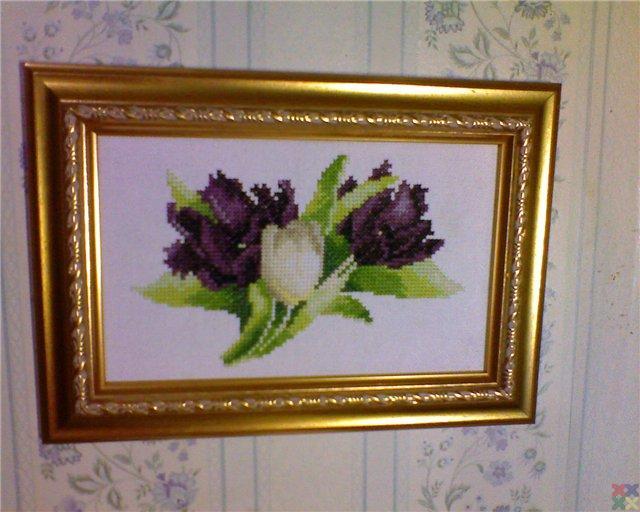 gallery_18987_1313_63410.jpg