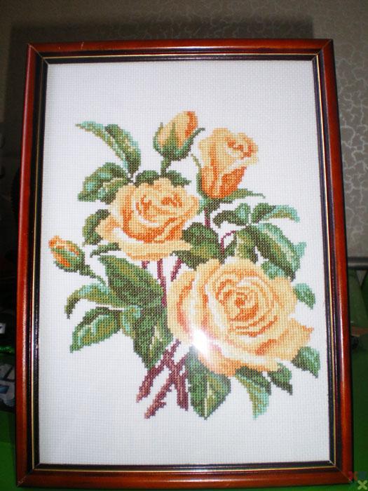 gallery_8002_1395_67007.jpg