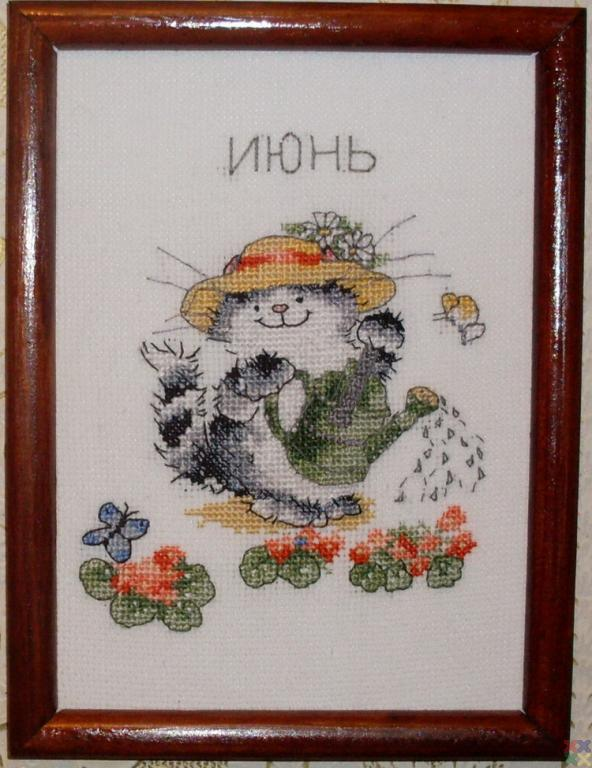 gallery_60190_1432_163148.jpg