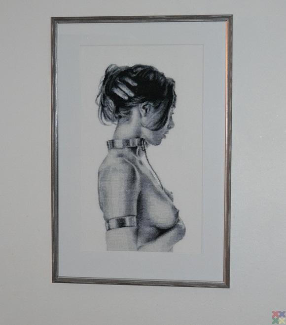 gallery_11054_1486_45246.jpg