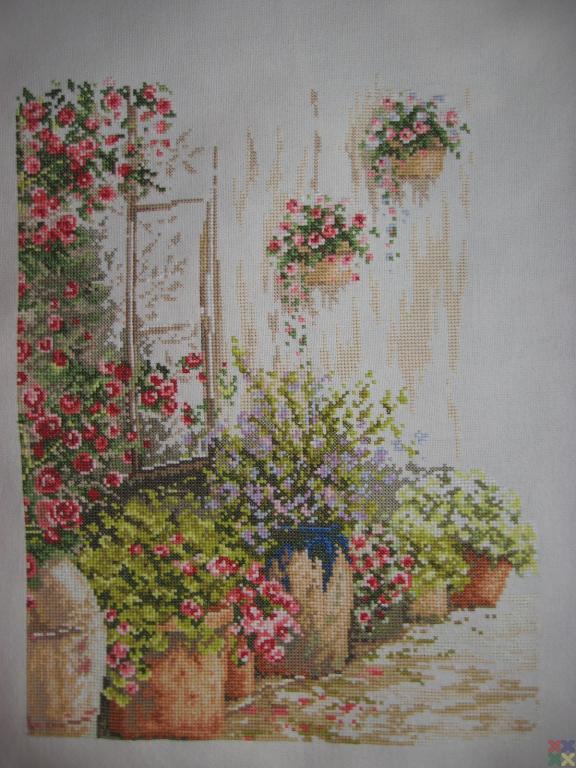 gallery_10891_1450_606517.jpg