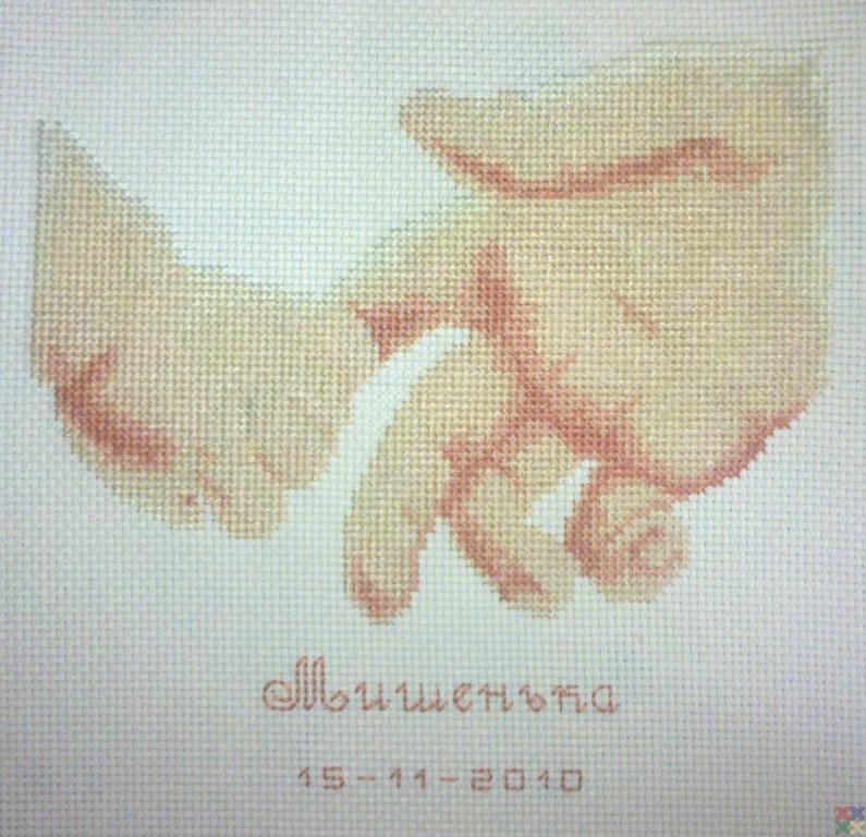 gallery_8778_1515_314297.jpg