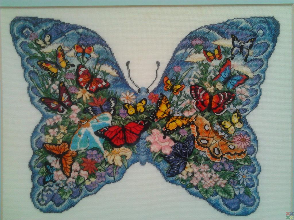 gallery_10891_1538_127377.jpg