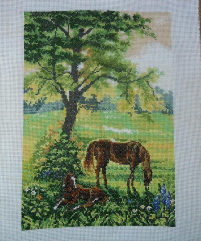 gallery_10891_1568_271940.jpg