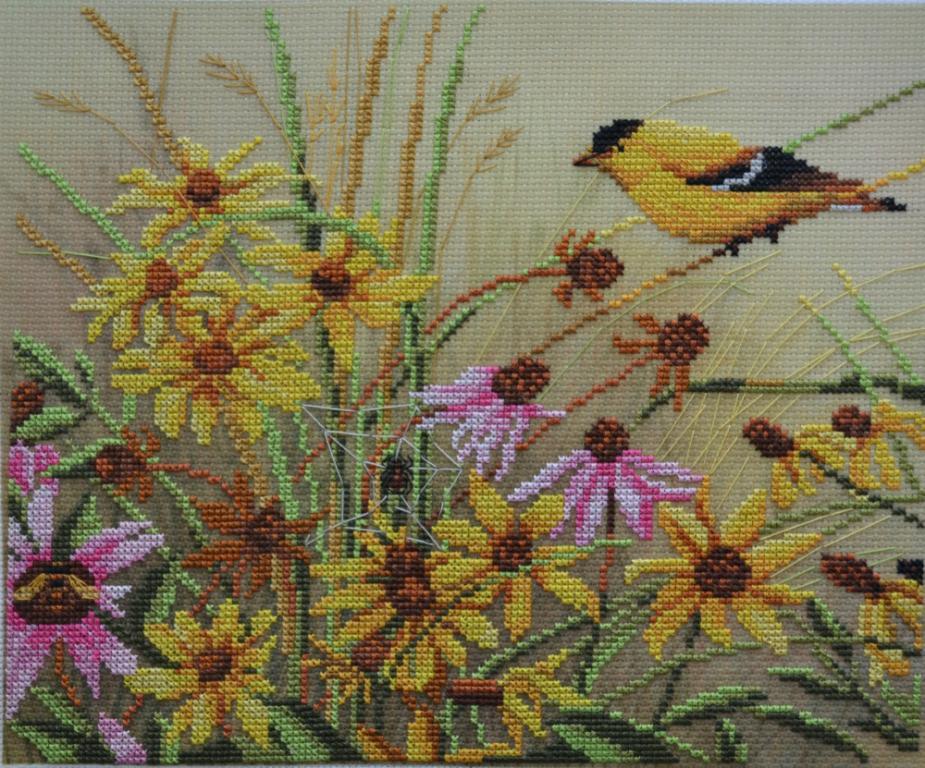 gallery_7951_1598_257299.jpg