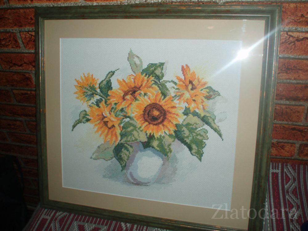 gallery_6599_864_94296.jpg