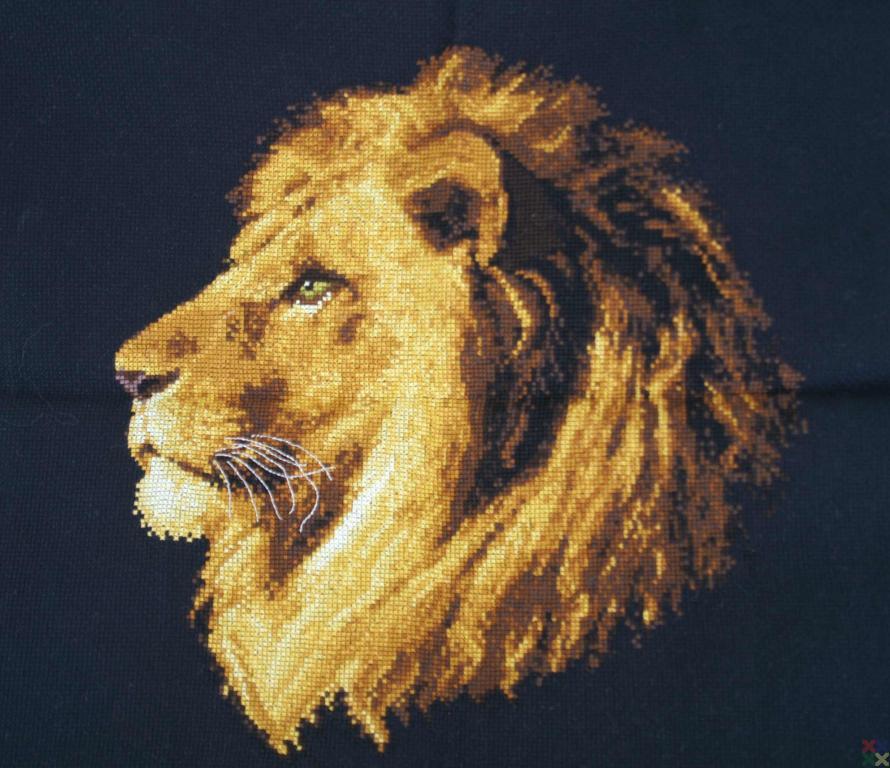 Вышивка бисером царь зверей 86