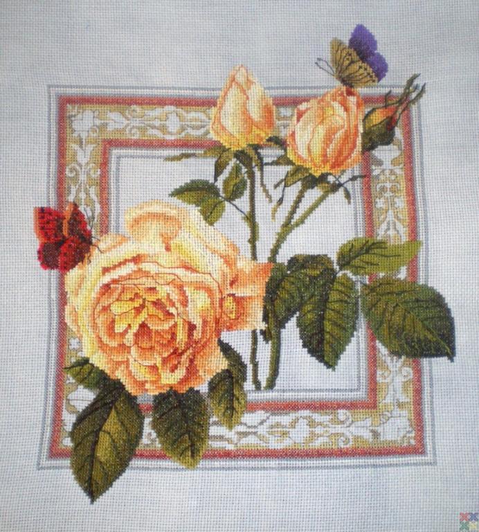 Вышивка роза и бабочка схема 8449