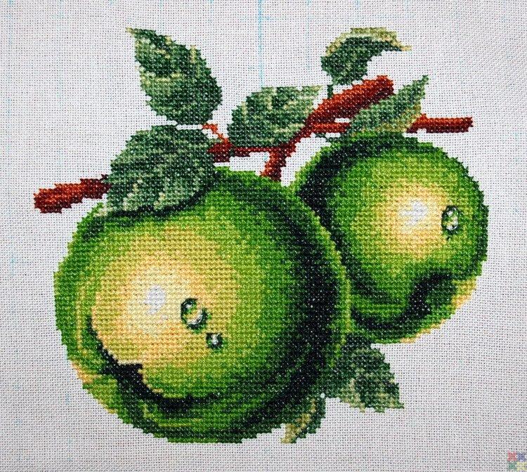 Вышивки крестом зеленое яблоко 95